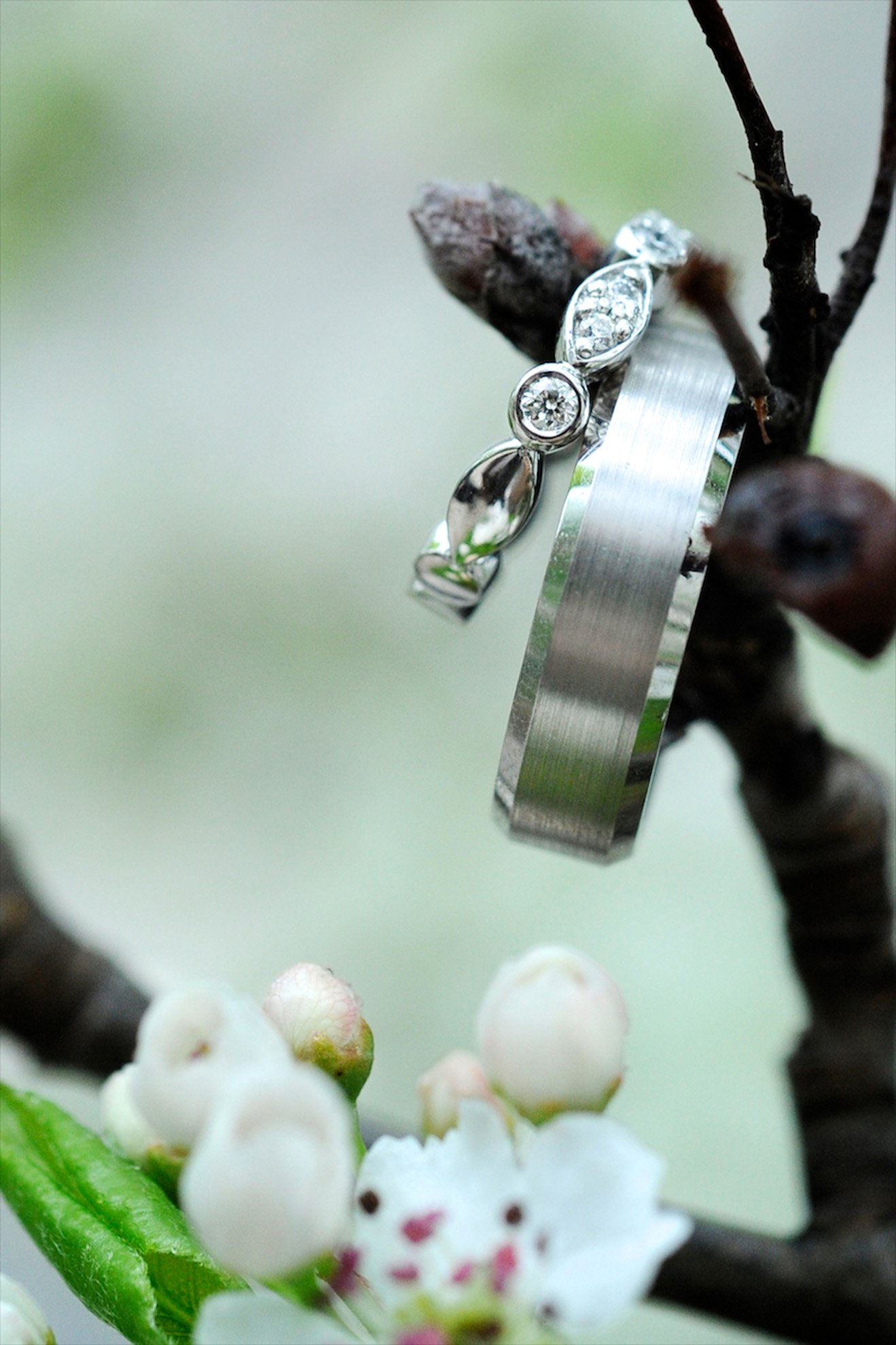 creative ring shot