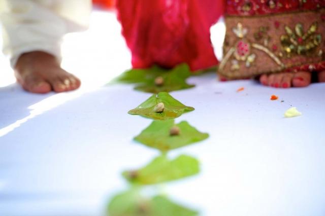toronto wedding hindu ceremony